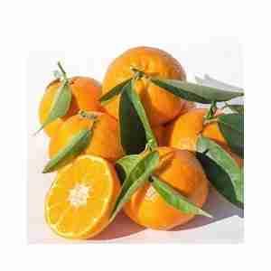 Con Mandarinas